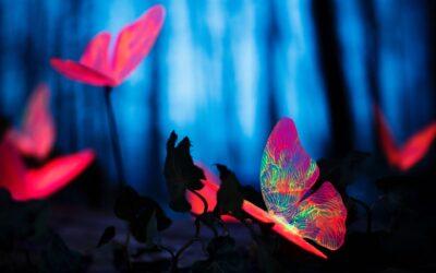 Tíz félreértés, ami megváltoztathatja az életedet