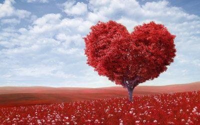 Gary Chapman: Az 5 szeretet nyelv